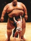日本相扑搞笑图