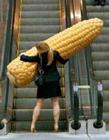 玉米搞笑图片