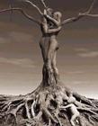 树创意图片