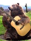 动物音乐会图片