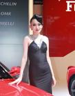2012海西汽博会车模