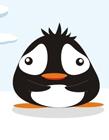 企鹅搞笑gif动态图片