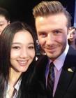 中国明星与贝克汉姆的合影照