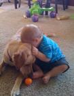 宝宝和狗狗的趣味生活