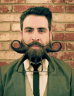 美国男子胡须艺术