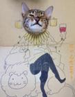 猫星人搞笑图片