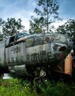 美国男子后院收藏30架二战战机