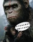 电影《猩球崛起》恶搞图片