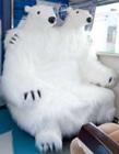 日本旭川动物园号列车