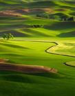 美国华盛顿帕卢斯地区壮丽的大草原