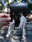 北京故宫穿越照走红