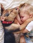 小孩与狗狗生活萌照