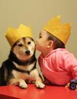 日本小孩和狗狗萌照