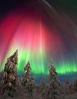 北极光摄影获奖图片