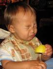 宝宝吃柠檬gif 小孩子吃柠檬动态图