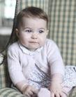 英国小公主夏洛特