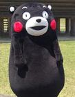 熊本熊gif动图 熊本熊搞笑gif