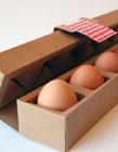国外鸡蛋包装设计 鸡蛋防摔包装设计