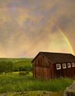 雨后彩虹图片大全