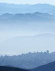 雾天摄影作品