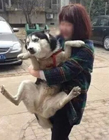抱狗搞笑图片