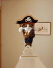 海盗猫走猫步的视频