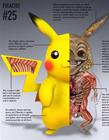 精灵宝可梦解剖图