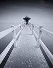 珠海淇澳岛图片