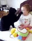 猫咪照顾婴儿 猫咪会照顾宝宝