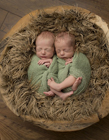 初生双胞胎图片