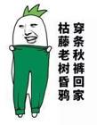 秋裤表情包 秋裤图片搞笑
