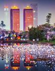 璀璨的夜色 繁华城市夜景图片