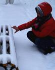 哈尔滨2016暴雪 哈尔滨下雪了吗