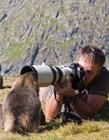 动物们和摄影师
