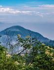 四川峨眉山风景图片