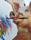 南非小猪会画画