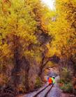 新疆最美小铁路 最美铁路风景线