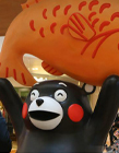 熊本熊上海虹桥 熊本熊上海展览