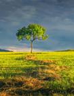 乌兰布统草原图片 乌兰布统什么时候最美