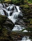 溪流图片 山间溪流图片