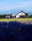 日本农村风光 日本农村生活