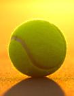 网球图片 网球图片大全