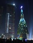 世界上最高的圣诞树