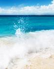 海浪照片 海浪的照片