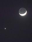 2016年11月3日金星合月 金星合月图片