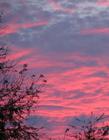 江西粉色天空 天空变成粉紫色