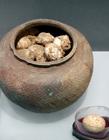 南京博物院鸡文展 西周鸡蛋图片