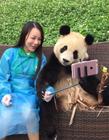 妹子晒与熊猫合影萌翻众人 它居然还会自己找镜头