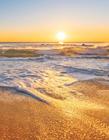 海滩场景图片 海滩场景图片大全