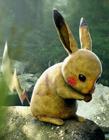 真实版宠物小精灵 口袋怪兽真实版